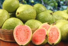 "GUAVA JUICE – THE TASTE OF ""FRUIT OF THE EARTH"""